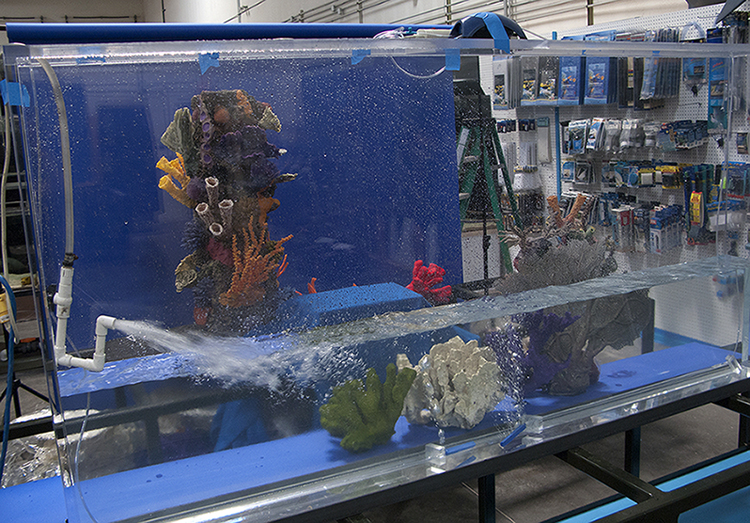 Tanked! – Animal Planet's New Reality Series – Keith Barraclough